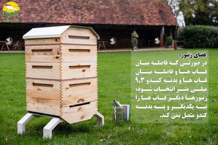 فضای زنبور