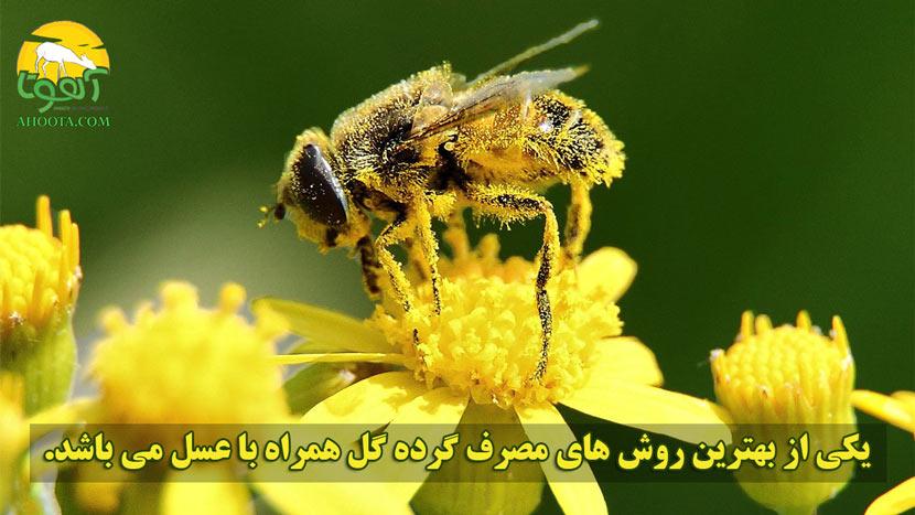 مصرف گرده گل