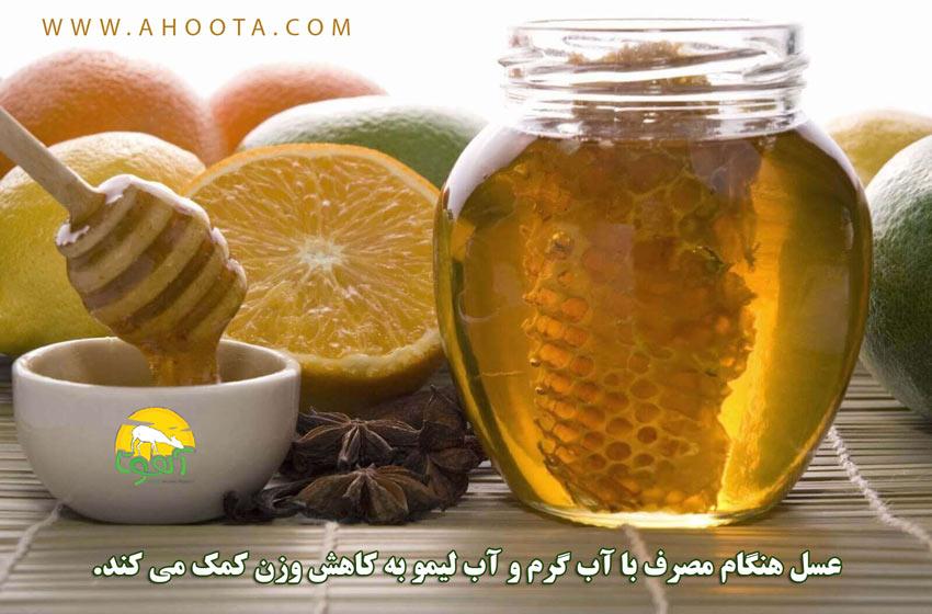 عسل و لیمو برای لاغری