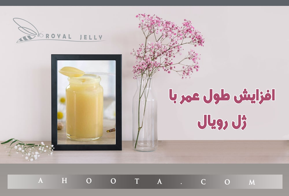 [تصویر:  The-benefits-of-Royal-Jelly-for-a-lifetime.jpg]