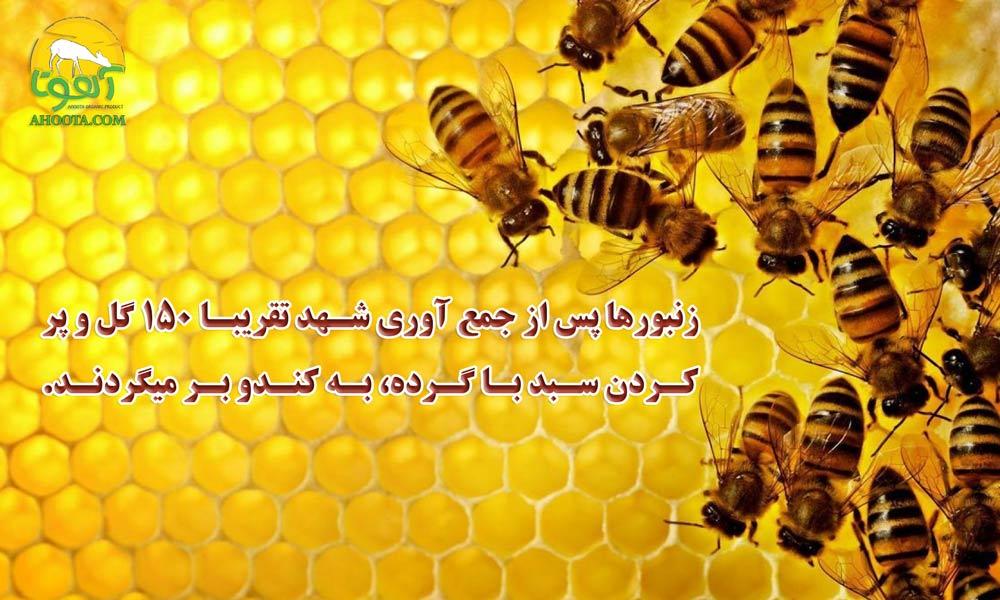تولید عسل طبیعی