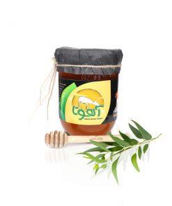 فروش عسل اکالیپتوس
