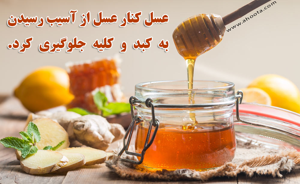 فواید عسل کنار