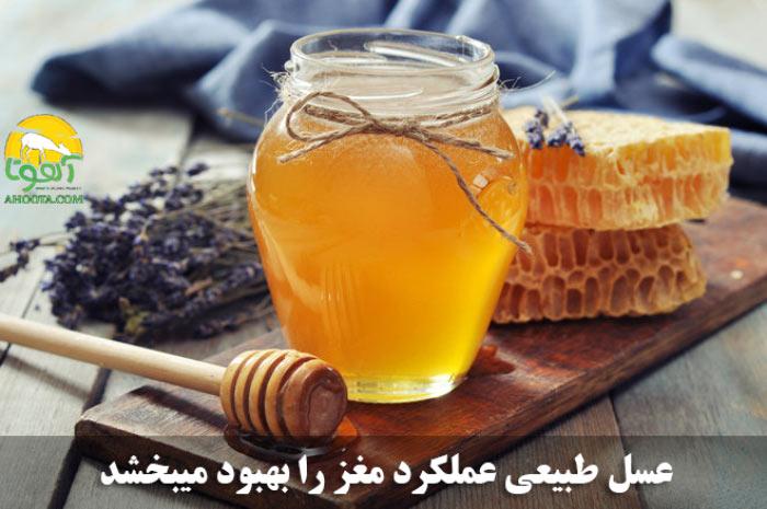 خواص عسل برای تقویت حافظه