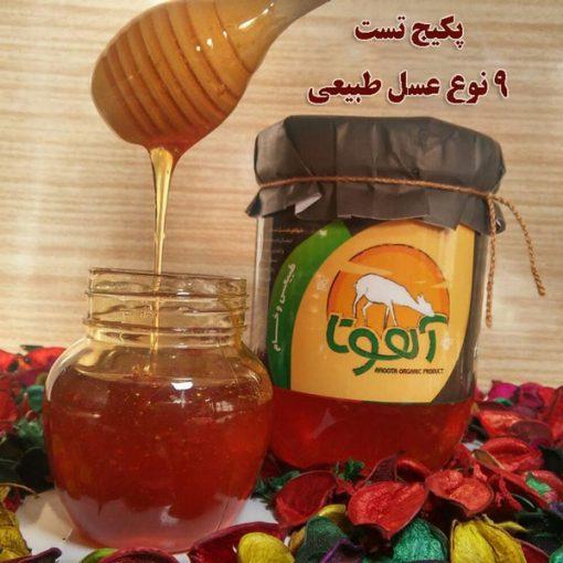 خرید پکیج تست عسل