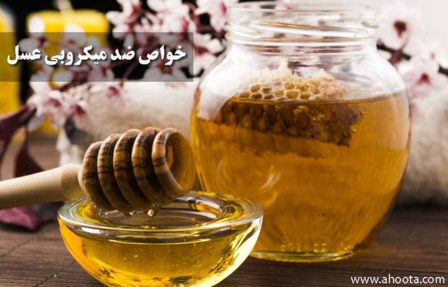 خواص ضد میکروبی عسل طبیعی