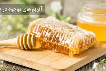 آنزیم های موجود در عسل طبیعی