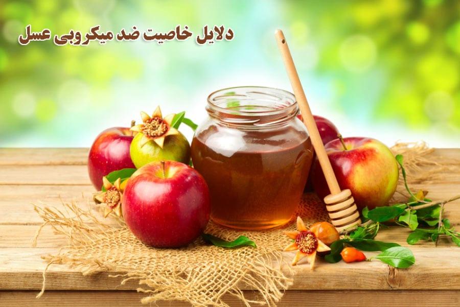 دلایل خاصیت ضد میکروبی عسل