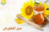 عسل آفتابگردان و خواص آن برای سلامتی