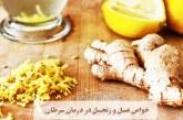 خواص عسل و زنجبیل در درمان سرطان