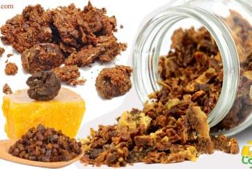 ترکیبات بره موم و مواد تشکیل دهنده آن را بهتر بشناسید