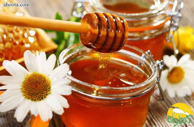 خواص عسل برای مغز ؛ راز یک تغذیه عالی