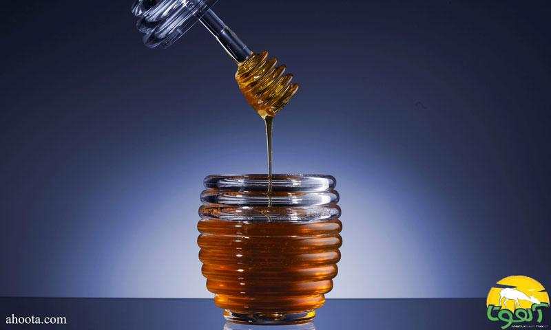 خواص فوق العاده عسل کلزا برای سلامتی
