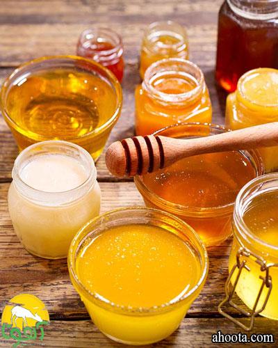 انواع عسل ؛ 37 نوع از عسل هایی که باید بشناسید