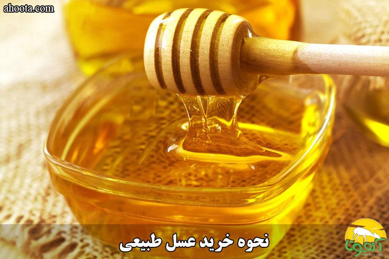 خرید عمده عسل طبیعی و دیگر محصولات زنبور عسل