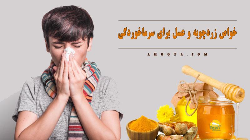 فواید زردچوبه و عسل برای سرما خوردگی