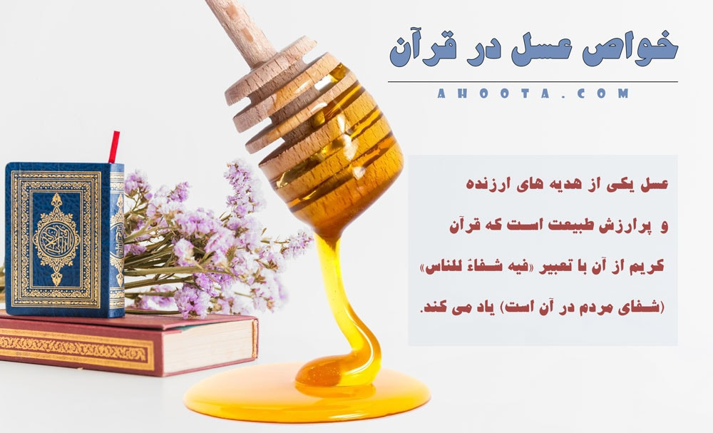 خواص عسل در قرآن؛ 23 خواص شگفت انگیز عسل از دیدگاه قرآن!