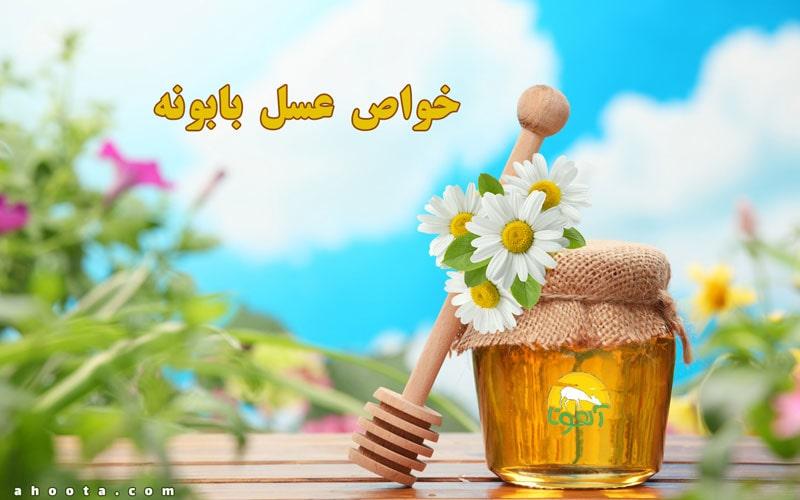 عسل بابونه؛ 11 خاصیت مهم عسل بابونه برای سلامتی!