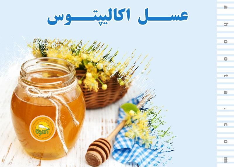 عسل اکالیپتوس؛ 9 قدم برای حفظ سلامتی با عسل اکالیپتوس!